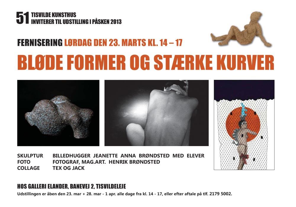 Plakat marts 2013 Elander.pdf