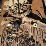 05_2012_driftwood22